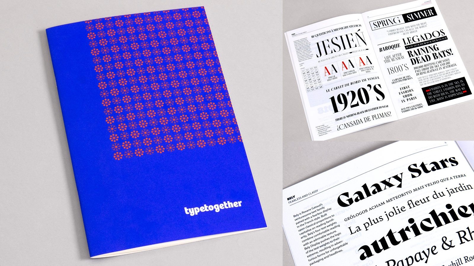 2019 TypeTogether's catalogue